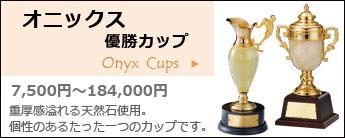 オニックス優勝カップ