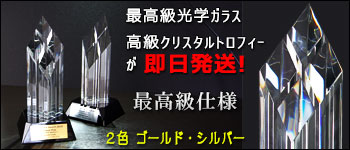 東京から即日発送高級クリスタルトロフィー